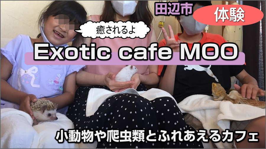 エキゾチックカフェMOO